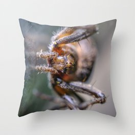 Friendly Spider Macro Photography Throw Pillow