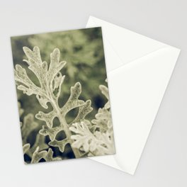 Nature Abstract 3 Stationery Cards