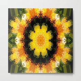 Flowering Spring... Metal Print