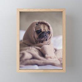Snug pug in a rug Framed Mini Art Print
