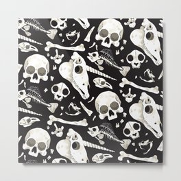 black Skulls and Bones - Wunderkammer Metal Print