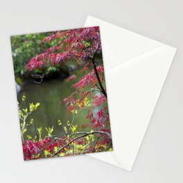 Red Summer Stationery Cards