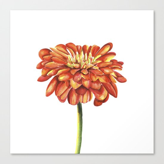 Red flower. Watercolor Canvas Print