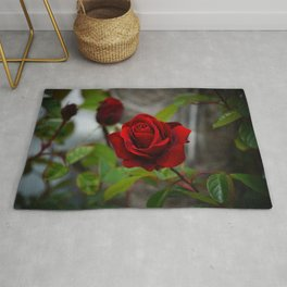 Red Rose by Little Prince Rug