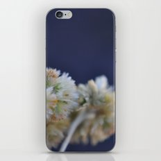 fluffy flower iPhone & iPod Skin