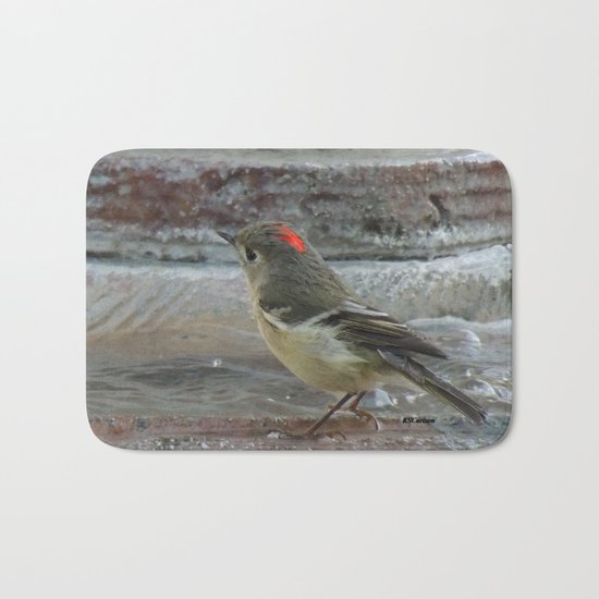 Ruby-Crowned Kinglet At The Fountain Bath Mat