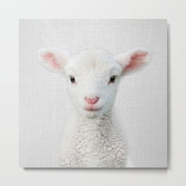 Lamb - Colorful Metal Print