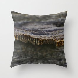 Spores on Wood #2 Throw Pillow