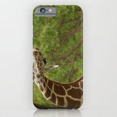C Giraffe Slim Case iPhone 6s