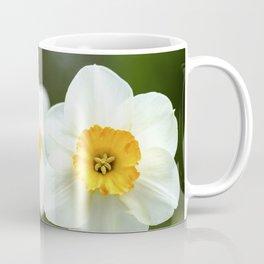 spring_2 Coffee Mug