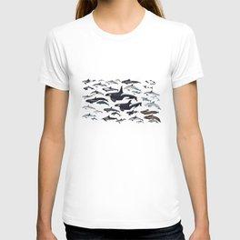 Dolphin diversity T-shirt