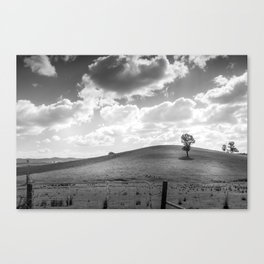 Country hills Canvas Print
