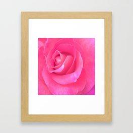 Electric Rose Framed Art Print