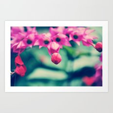 Sweet Flower Art Print