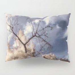 R72: Tree Pillow Sham
