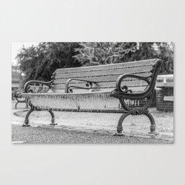 New Bern Ice Storm - Bench Canvas Print