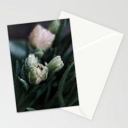Returning Spring II Stationery Cards