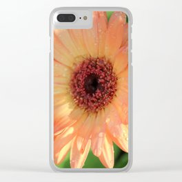 Daisies and Dew Drops Clear iPhone Case