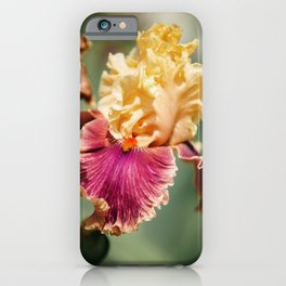 Gold and Fuchsia Iris iPhone Case