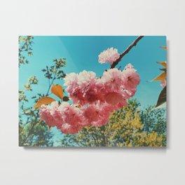 Spring Flowers in D.C. Metal Print