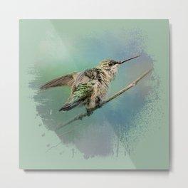 Hummingbird On Mint Metal Print