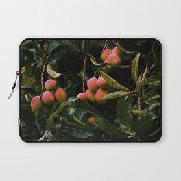 Mango tree Laptop Sleeve