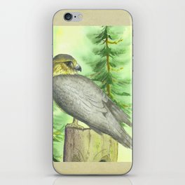 Merlin Falcon iPhone Skin