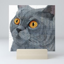 Blue British Shorthair cat Mini Art Print