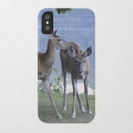 Early Evening Visitors Young Deer -Debra Cortese photo art iPhone Case