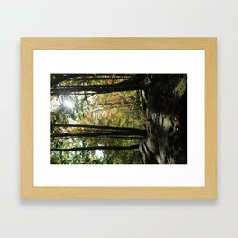 Surreal Framed Art Print