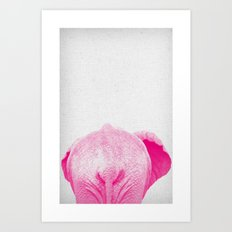 Elephant 01 Art Print