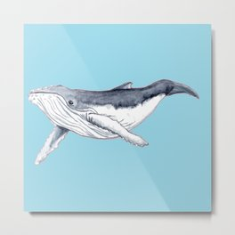 Baby humpback whale blue for boys and baby room Metal Print