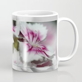 Sweet William from the Super Duplex Bluepoint Mix Coffee Mug