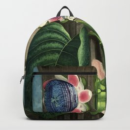 The Quadrangular Passion Flower :  New Illustration Of The Sexual System Backpack