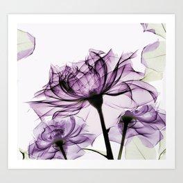 blush purple rose Art Print