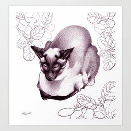 Siamese Champion Cat Art Print