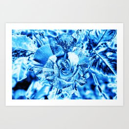 Blue and Turquoise Ice Rose Art Print