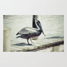 Sunbathing Pelican Rug