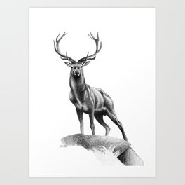 All Muscle - Red Deer Stag Art Print