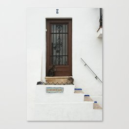 Two cats on White Stairs Canvas Print