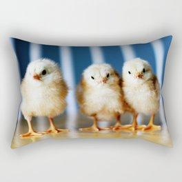 buckeye chicks Rectangular Pillow