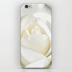 Pale iPhone & iPod Skin