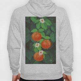 Branch Of Mandarin Orange Hoody