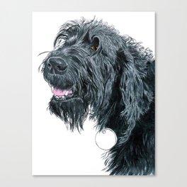 Smiling Black Labradoodle Canvas Print