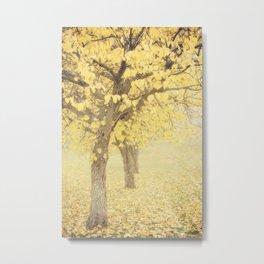 Sunnyside Metal Print