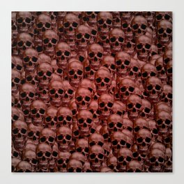 Skull wall Canvas Print