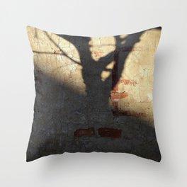 006 Throw Pillow