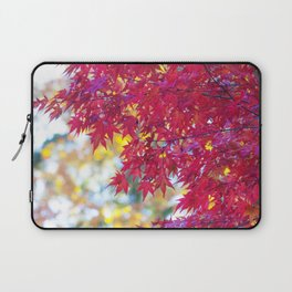 Maple in the Fall Laptop Sleeve