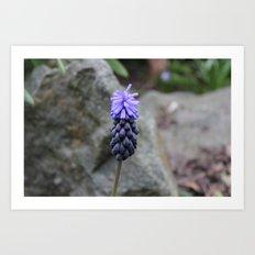 Wow, it's purple! Art Print
