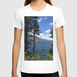 Jenny Lake T-shirt